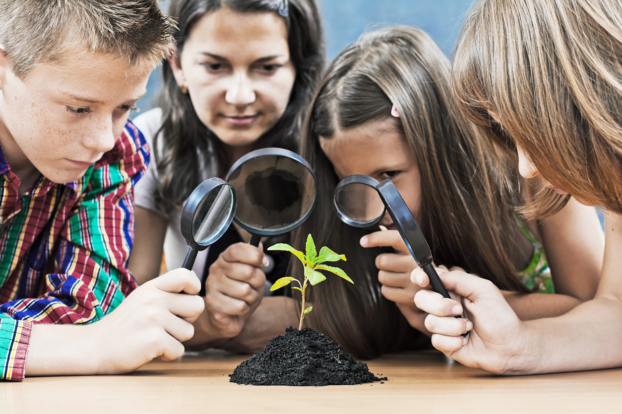 26131586 - teacher and students looking at a plant through magnifier
